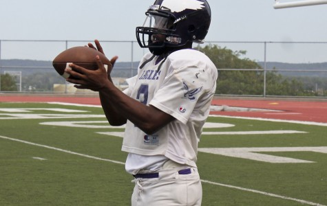 Sophomore quarterback thrives on the field
