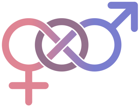 Pansexuality just another label, same as bisexuality